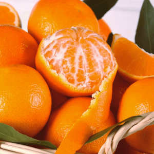 clementine nova - Arancia Mia