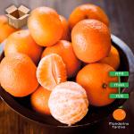 Pacco 15 Kg di Mandarini Tardivi