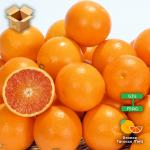 Pacco 15 Kg di Arance Tarocco Meli