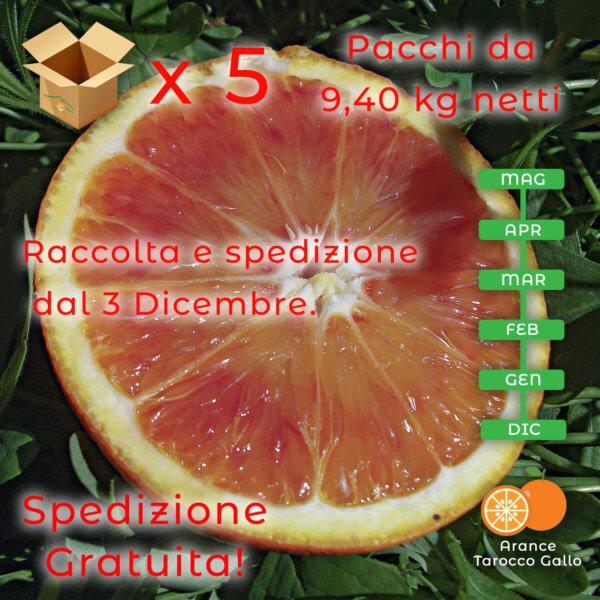 Arance tarocco gallo da tavola5x10 - Arancia Mia