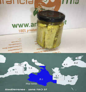 Filetti di pesce spada - Arancia Mia
