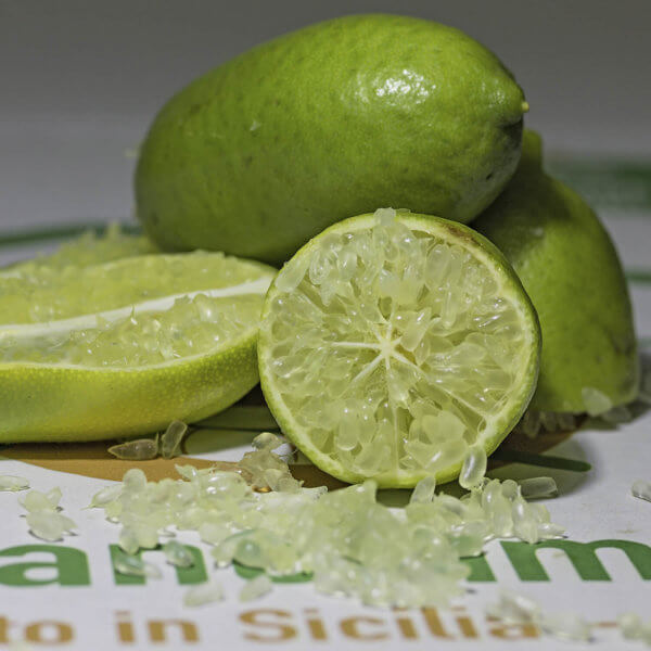 Finger Lime Siciliano - Arancia Mia