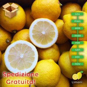 Limoni siciliani - arancia mia