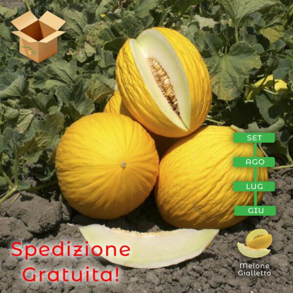 Melone Gialletto con pacco - Arancia Mia