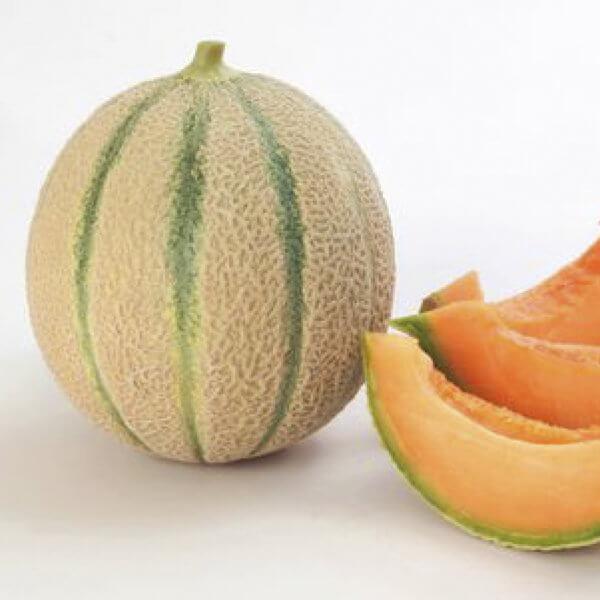 Melone retinato - Arancia Mia