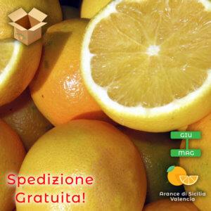 Arance di Sicilia Valencia - Arancia Mia
