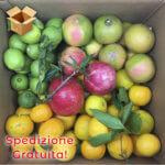 Pacco 15 Kg Frutta Mista