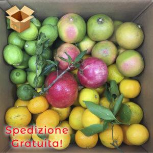 pacco frutta mista - arancia mia