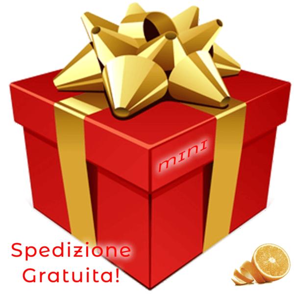 pacco-regalo-natale-mini-arancia - Arancia Mia
