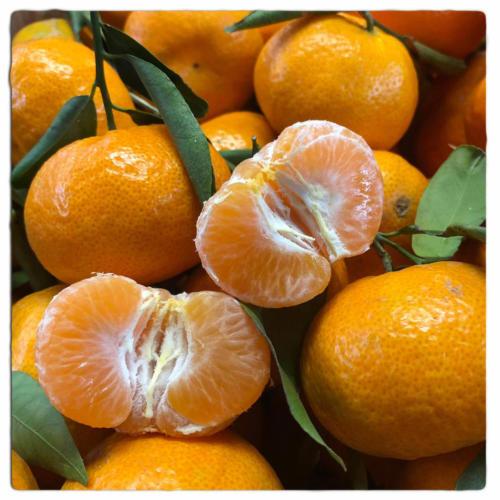 mandarini tradizionali
