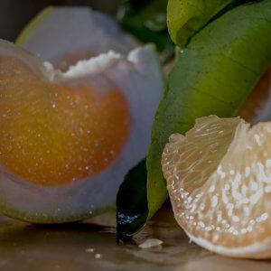 pompelmi gialli giganti - arancia mia